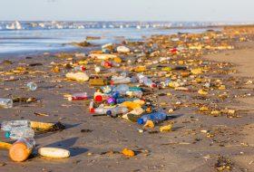 Plastik forurening i Danmark