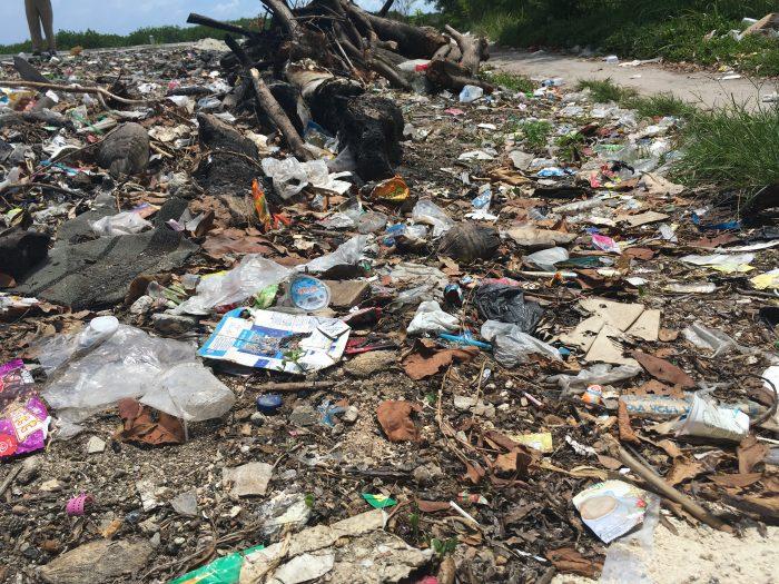 Plastikposer i naturen