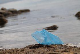 Plastikposer i naturen_Plastic Change