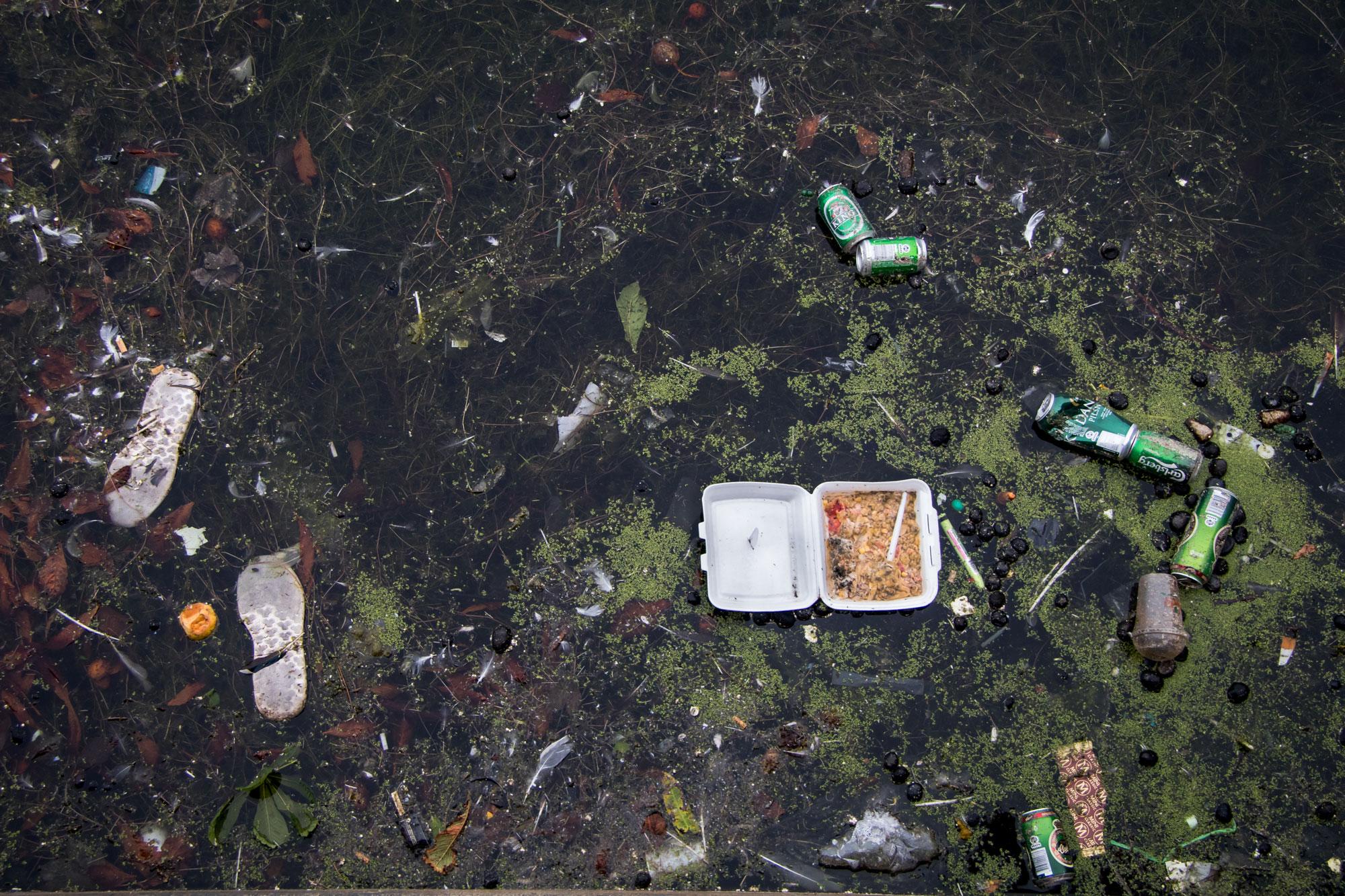 Plastik affald i naturen - styrefoam