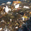 Plastikforurening i Danmark - Plastic Change
