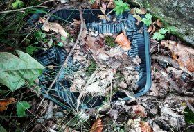 Plastik i naturen - Plastic Change