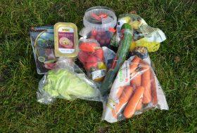 plast engangsemballage og madspild - Plastic Change