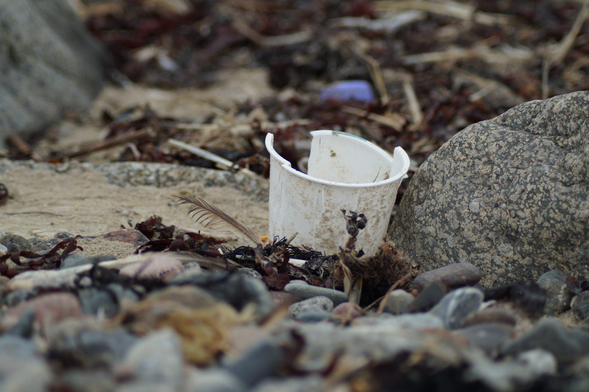 Plast forurening - Plastic change - Hanne Svendsen