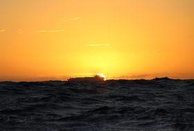 Plastikforurening i havet