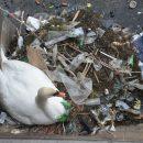 Fakta om plastik i havet
